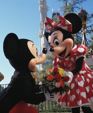 RomanticMickeyMinnie
