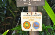 Become a Wilderness Explorer for the Day at Disney's Animal Kingdom!