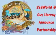 SeaWorld Partners with Guy Harvey