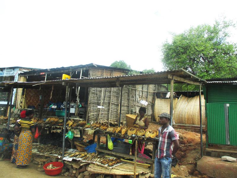 Luangwa fish market