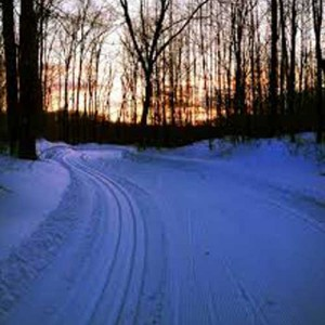 dusk-cross-country-skiing-300x300