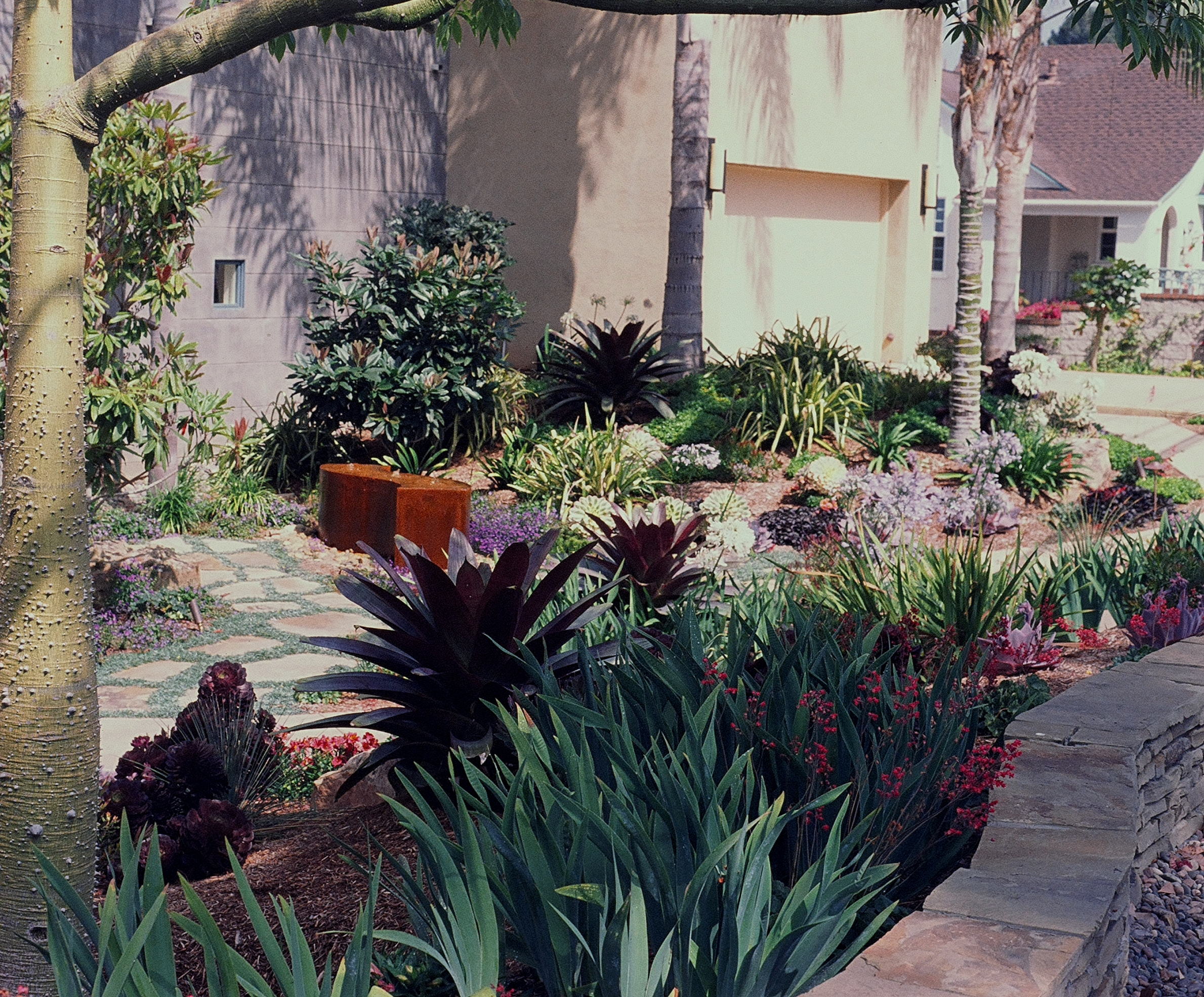Portfolio for Low water landscaping