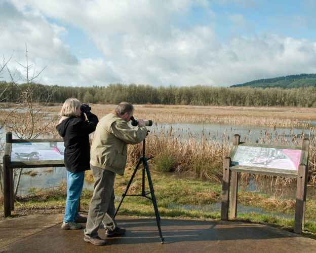 birders-enjoying-the-birdwatching