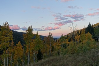 September: Sunrise in the Aspens of Piney Lake, Colorado