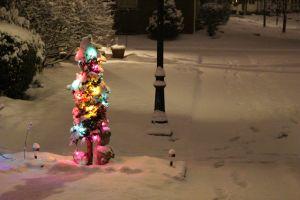 snowday1_s.jpg