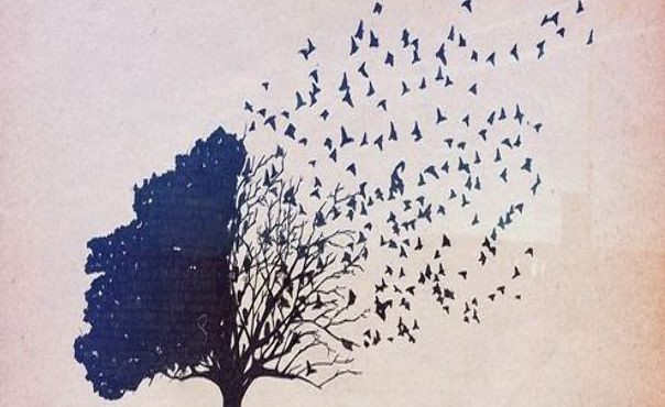 life-dreams-hipsters-tree-birds-Quotes