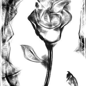 Prison Rose