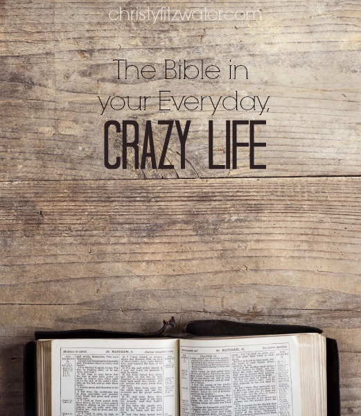 The Bible in Your Everyday, Crazy Life