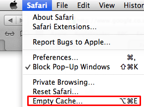 Empty application cache Safari