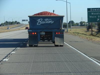 haulingtomatoes.jpg