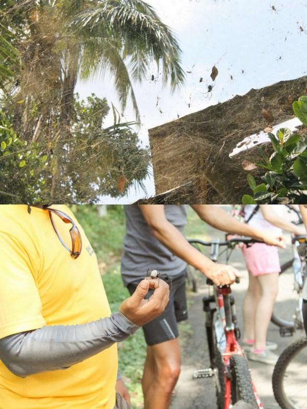 Bali Bike Baik Tours6