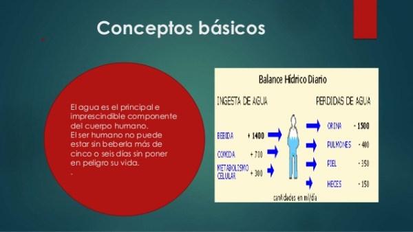 Conceptos básicos del agua