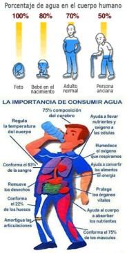 Las funciones del agua