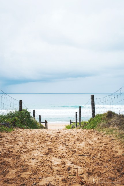 Beach Portraits in Sydney