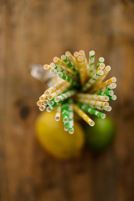 Sydney Photographer: Still life of citrus