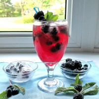Frosty Berry Sangria #BerryDelish #FWCon #AD