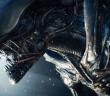 ca_alien_01