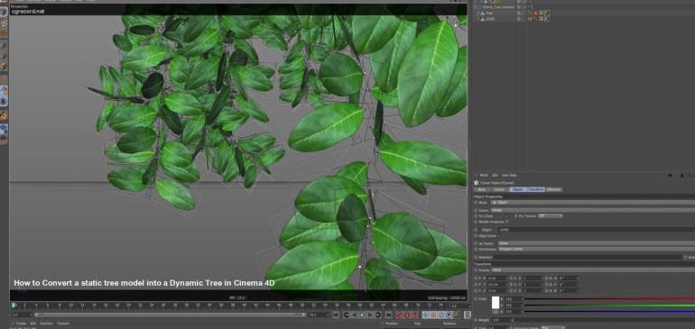 Convertire un modello 3D di albero statico in un modello dinamico in Cinema 4D