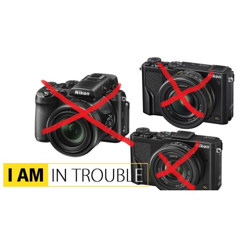 Medium Crop Of Nikon Dl24 500