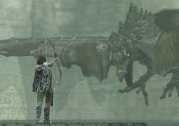 Shadow of the Colossus.