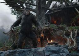 Trailer final de El amanecer del planeta de los simios