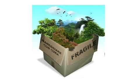 Quanto è tortuosa la via della sostenibilità?