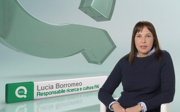 """SU QVC VA IN ONDA IL FAI  """"PERCHÉ L'ITALIA È UN PATRIMONIO DI TUTTI"""""""