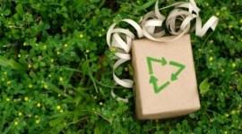 Capodanno Eco, ecco i consigli di Reuters!