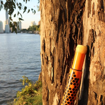 Bees Wax Mouthpiece