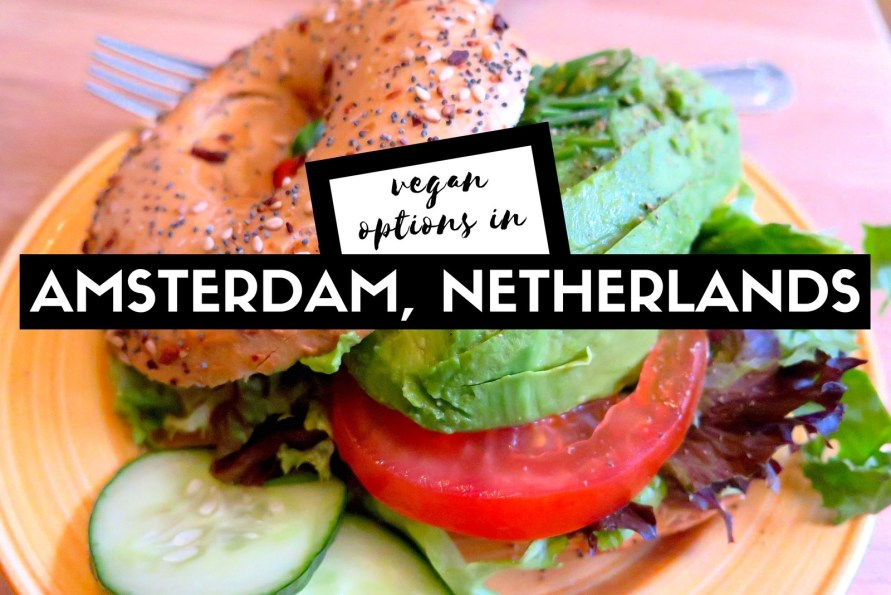 vegan options in amsterdam