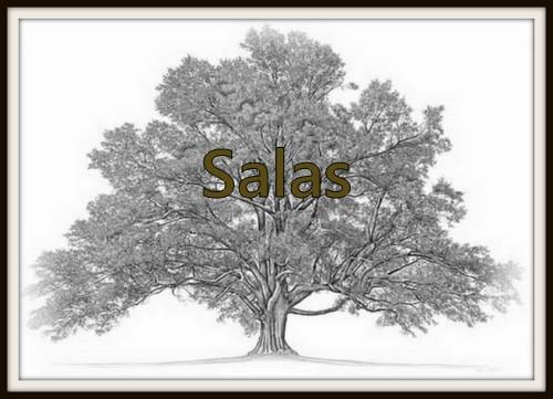 #52Ancestors: Tracking Down My Great Grandfather Estevan Salas
