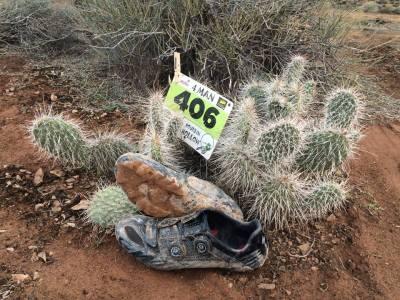 ... Filipovo zátiší s kaktusy ...