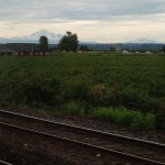 Farmland BC - Amtrak Cascades Rail from Vancouver to Seattle
