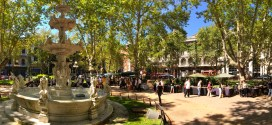 Plaza Matriz, Yerba Mate and Antiquing