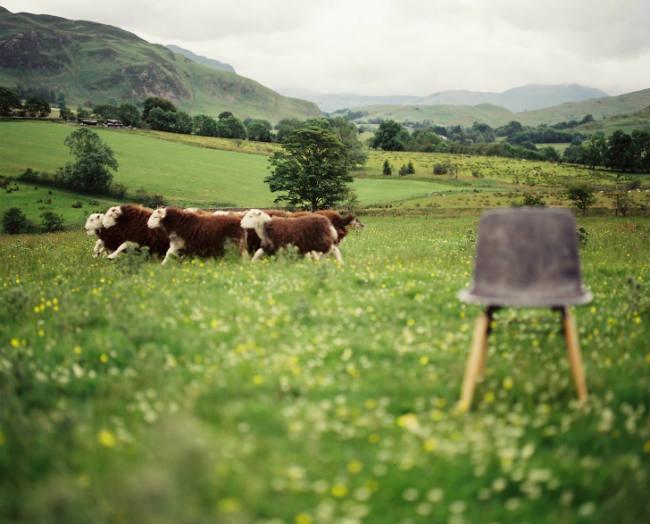 Solidwool - Herdwick wool (Photo credit Jim Marsden) 2