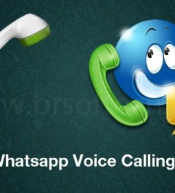 WhatsApp Voice-Calling