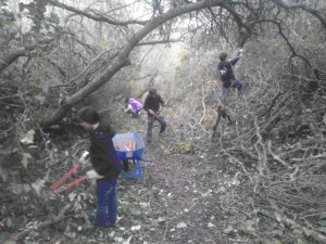 Students pictured above clear brush to restore an over-grown nature trail