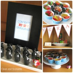 Small Of Graduation Party Food Ideas