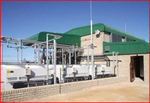 Biogas Power Plant_Petro SA