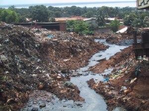 sewage_Guinea