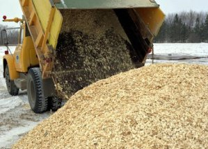 Poplar_Wood_Chips