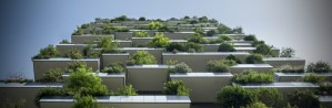 green-roof-beauty-content