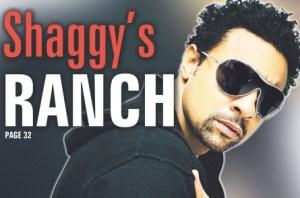 Shaggy:Ranch