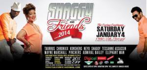 Shaggy:FriendsPoster