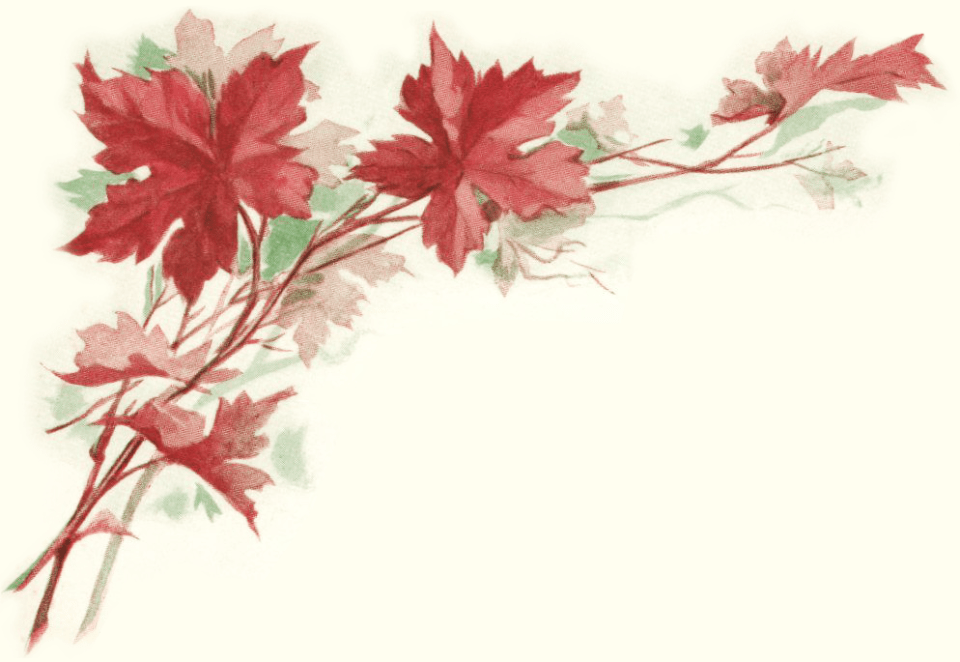 Victorian Autumn Leaf Illustration