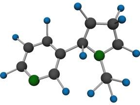 Nicotine molecule
