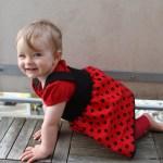 Crawling ladybug