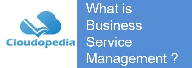 Definition of Business Service Management