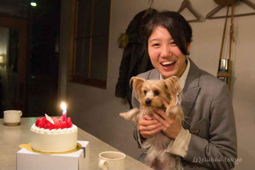 誕生日 ケーキ ヨークシャーテリア