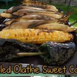 Grilled Sweet Corn Salsa Recipe – Easy